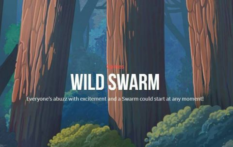 Wild Swarm Push Gaming Slot Info