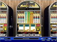 Black and White Gold 1 Line Parlay Slot Slot Reels