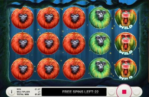 7 Monkeys Topgame Slot Reels